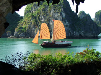 Halong Tour - 1 Day